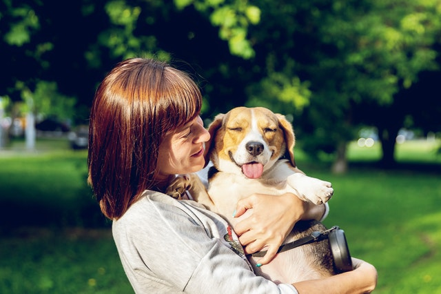 Things you can do to make your dog happy healthy