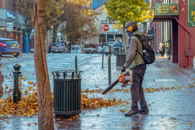 Factor to Consider Before Buying Leaf Blower